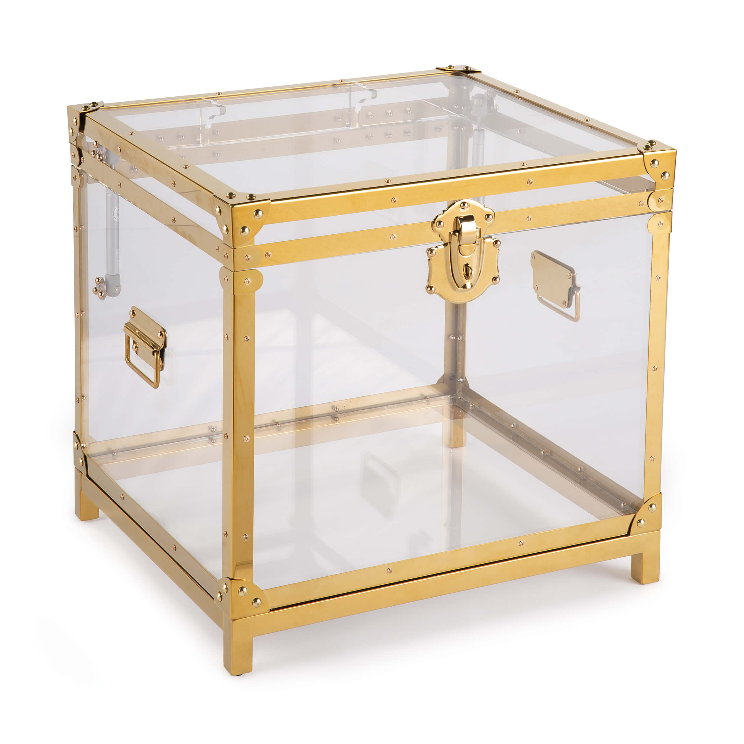 Oceane Acrylic Trunk Gold | Regina Andrew